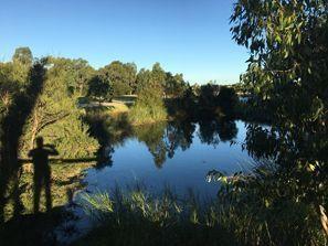 Ubytování Clayton, Austrália
