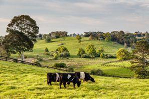 Ubytování Coopers Plains, Austrália