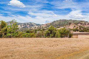 Ubytování Muswellbrook, Austrália