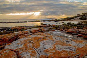 Ubytování Orange, Austrália