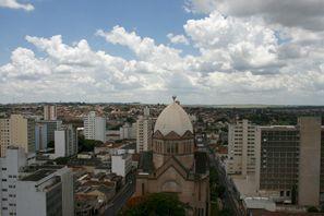Ubytování Araraquara, Brazília