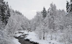 Ubytování Nurmijarvi, Fínsko