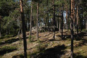 Ubytování Paimio, Fínsko