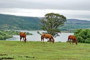 Ubytování Estcourt, Juhoafrická republika