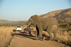 Ubytování Klerksdorp, Juhoafrická republika