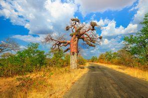 Ubytování Makhado, Juhoafrická republika