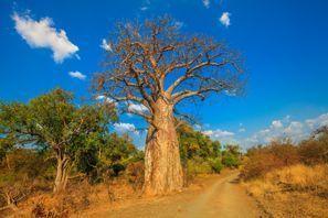 Ubytování Musina, Juhoafrická republika