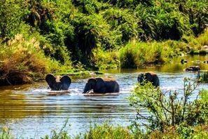 Ubytování Phalaborwa, Juhoafrická republika