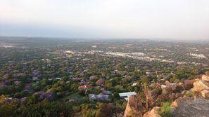 Ubytování Rosebank, Juhoafrická republika