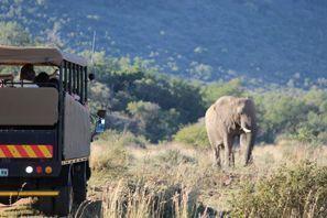 Ubytování Vryburg, Juhoafrická republika