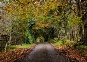 Ubytování Omagh, Severné Írsko