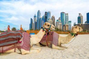 Spojené Arabské Emiráty MIÉRT NEM EZT HASZNÁLJA?